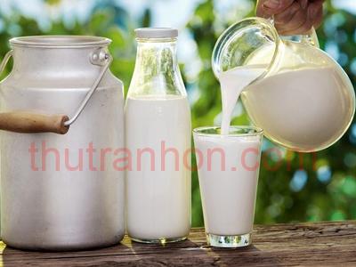 hương sữa